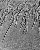 Canais da água subterrânea na areia Fotografia de Stock