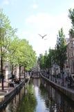 Canais de Amsterd?o imagens de stock royalty free