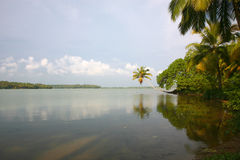 Canais nas águas traseiras em Kerala Imagem de Stock Royalty Free