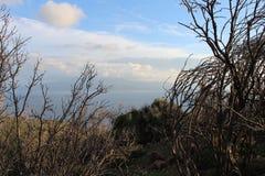 Aegean sea and pony island Stock Image
