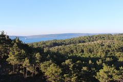 Coast forest. Canakkale throat and güzelyalı coast forest and road Royalty Free Stock Images