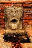 Canalón de agua de la gárgola Imagen de archivo libre de regalías