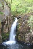 Canalón de Hollybush, rastro de las cascadas de Ingleton Fotografía de archivo
