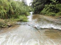 Canal à naturel Images libres de droits