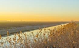 Canal à vista do nascer do sol abaixo de um céu azul amarelo fotos de stock