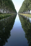 Canal. Endless canal with trees on each side Stock Photography