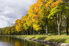 Canal alineado árbol en la caída Fotos de archivo libres de regalías