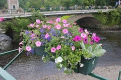 Canal avec des fleurs sur un pont images libres de droits