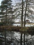 Canal avec le lac derrière et la réflexion d'arbre Image stock