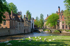 Canal and Beguinage in Bruges, Belgium Royalty Free Stock Images
