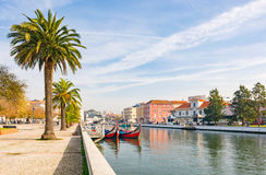 Canal boat gondola palm sunny Aveiro Stock Image