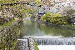 Canal with cherry blossom in Arashiyama,Kyoto. Natural travel destination in Kyoto Royalty Free Stock Photo