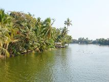 Canal com palmeiras curvadas, Kerala da maré, Índia Fotos de Stock Royalty Free