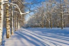 Canal congelado bajo nieve Fotografía de archivo libre de regalías