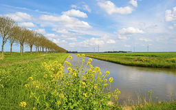 Canal through the countryside Royalty Free Stock Photography