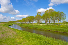 Canal through the countryside Royalty Free Stock Image