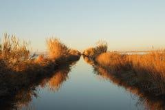 Canal d'irrigation dans la lagune de Valence Images stock