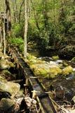 Canal da água Fotografia de Stock Royalty Free