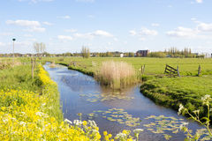 Canal de água em Kinderdijk, Holanda Fotografia de Stock Royalty Free