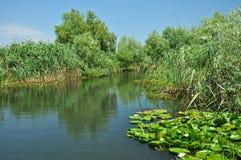 Canal de água no delta de Danúbio fotografia de stock