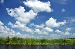 Canal de água no delta de Danúbio, Romênia imagem de stock
