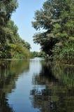 Canal de água, rio no delta de Danúbio fotografia de stock