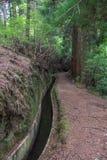 Canal de agua de Levada Imagenes de archivo