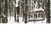 Canal de alimentación para los pájaros en un bosque nevoso con un lugar para un i Imagen de archivo libre de regalías