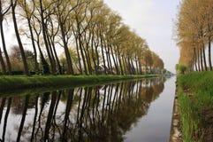 Canal de Bruges avec la réflexion d'arbre Photo stock