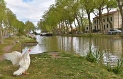 Canal de Jonction σε Salleles δ ` Aude Στοκ Φωτογραφία
