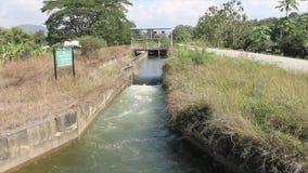 Canal de la irrigación almacen de video