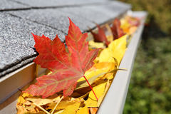 Canal de la lluvia por completo de hojas Foto de archivo libre de regalías