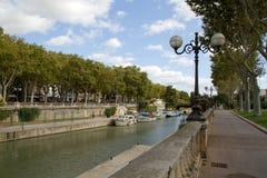 Canal de la Pisco de peito vermelho Foto de Stock Royalty Free