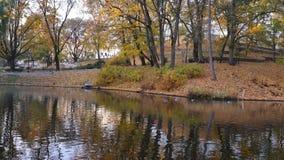 Canal de Riga en tiempo del otoño metrajes