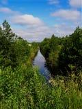 Canal del agua en un bosque Fotografía de archivo libre de regalías