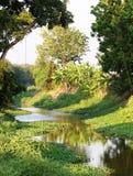 Canal del agua que rodea con el ambiente tropical verde Foto de archivo libre de regalías