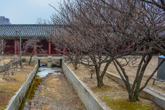 Canal2. The dry canal inside the area of Changgyeong palace Stock Image