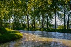 Canal du Midi, árvores do sicômoro e água bonitos, França do sul Imagem de Stock Royalty Free