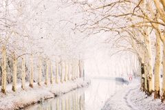 Free Canal Du Midi In Winter Stock Image - 29679901
