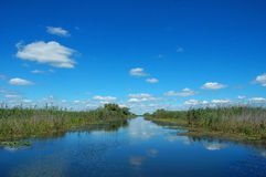 Canal en el delta de Danubio Imagen de archivo