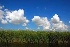 Canal en el delta de Danubio Fotos de archivo libres de regalías