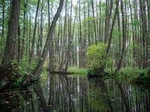 Canal en Mecklenburg Foto de archivo