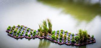 Canal flotante hecho hombre Singapur de Punggol de los humedales Fotografía de archivo libre de regalías