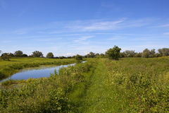 Canal footpath in summer. A section of scenic canal beside grazing pastures and a footpath with woods and hawthorn trees under a blue sky in summer in yorkshire Royalty Free Stock Photography