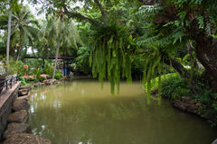 Canal and garden. Canal and public garden for relax royalty free stock photography