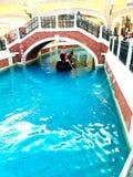 Canal grande Immagini Stock