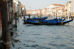 Canal Grande in Venice. The charming Canal Grande in Venice Royalty Free Stock Photo
