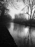 Canal helado blanco y negro con la reflexión del árbol Imagenes de archivo
