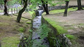 Canal inside garden of Todai-ji Temple in Nara, Japan stock footage