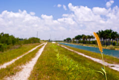 Canal and Levee Royalty Free Stock Photography